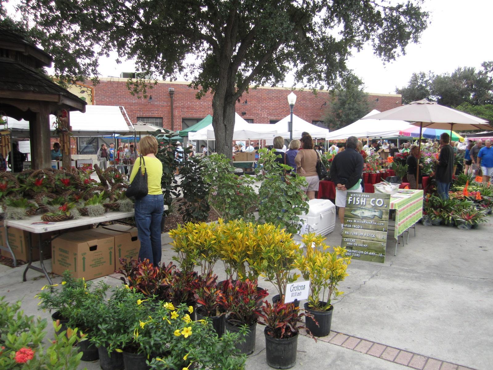 Winter Park Farmer S Market Healthy Laps